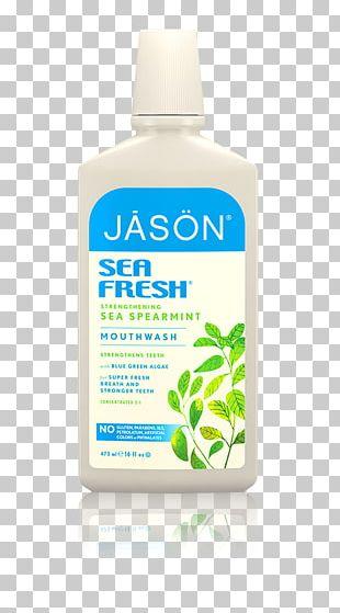 JĀSÖN Healthy Mouth Mouthwash JĀSÖN Sea Fresh Toothpaste Dental Care PNG