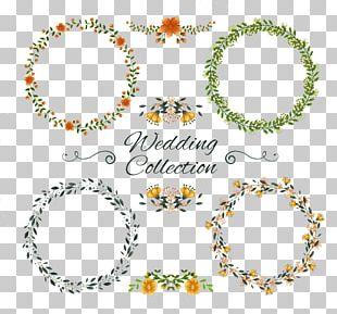 Wedding Invitation Ornament Flower PNG