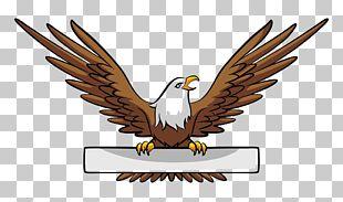 Bald Eagle Banner Illustration PNG