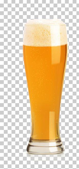 Beer Cup Drink Illustration PNG