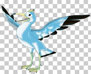 Beak Goose Bird Cygnini Duck PNG