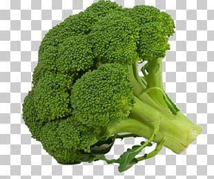 Broccoli Cruciferous Vegetables Cauliflower Kale PNG