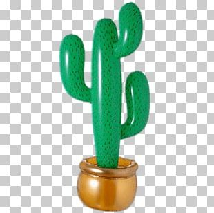 Inflatable Cactus PNG