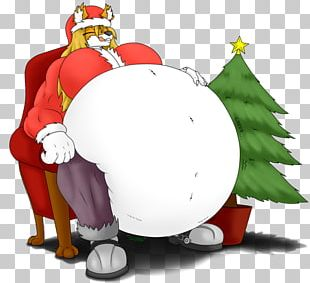 Penguin Santa Claus Christmas Ornament Cartoon PNG
