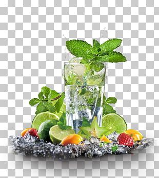Maghrebi Mint Tea Juice Iced Tea Lemon PNG