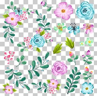 Flower Illustration PNG
