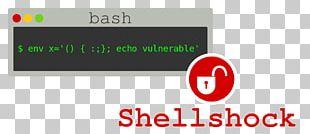 Shellshock Bash Vulnerability Software Bug PNG