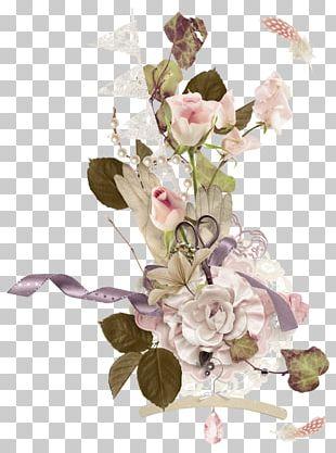Floral Design Portable Network Graphics Flower PNG