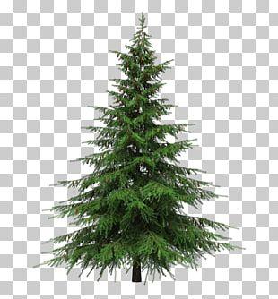Balsam Fir Artificial Christmas Tree Pre-lit Tree PNG