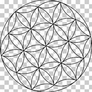 Sacred Geometry Seed PNG