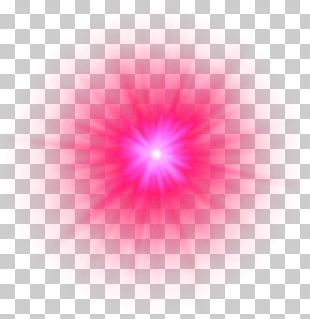 Light Petal Circle Pattern PNG