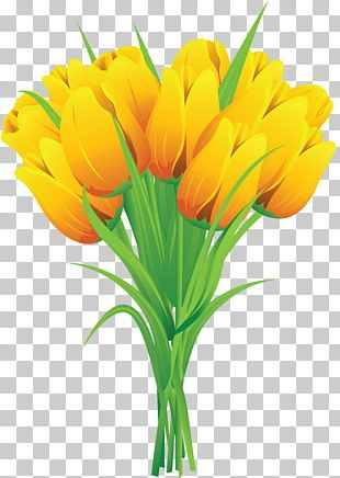 Tulip Flower Bouquet Yellow PNG