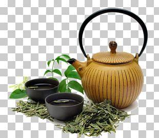 Green Tea Oolong White Tea Kuding PNG