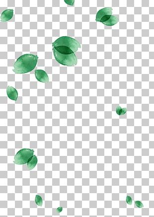 Leaf Watercolor Painting Green PNG