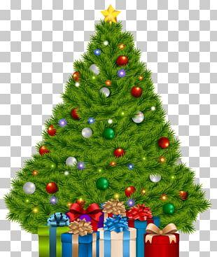 Christmas Tree Christmas Gift PNG