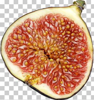 Mission Fig Fig Wasp Weeping Fig Fruit PNG