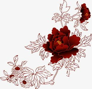 Chinese Red Flowers Line Drawing Material PNG