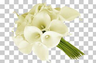 Arum-lily Flower Bouquet Cut Flowers Floral Design PNG