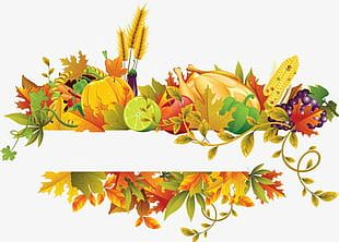 Fall Flowers Fruit Border PNG