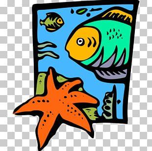 Marine Life Oceanography Marine Biology PNG