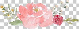 Floral Design Rose Flower Pink Portable Network Graphics PNG