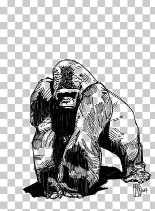 Western Gorilla Tattoo Phaeleh @ Gorilla Drawing Groovanometry PNG