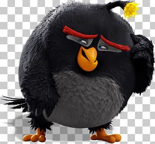 Angry Birds Bomb Character PNG