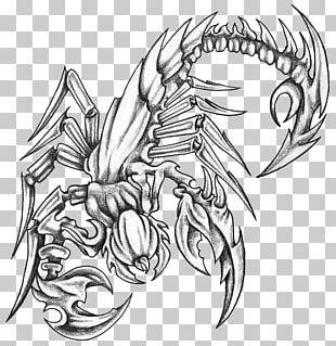 Tattoo Artist Scorpion Drawing Irezumi PNG