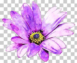Purple Flower Watercolor Painting PNG