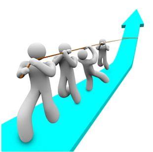 Training Organization Business Human Resource Management PNG