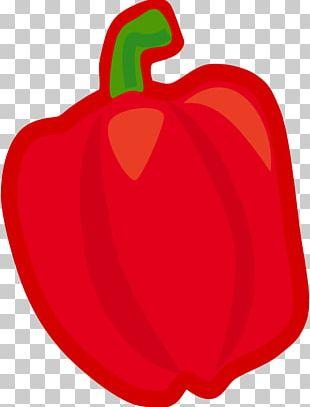 Bell Pepper Fruit Vegetable PNG