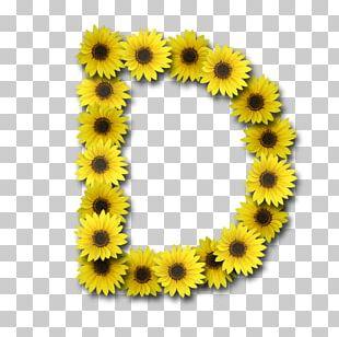 Letter Alphabet Video Font PNG