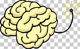 Human Brain Stock Photography Mind Uploading PNG