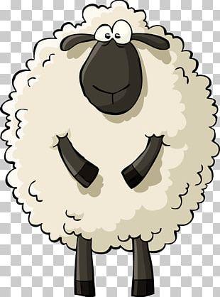 Sheep Drawing Cartoon PNG