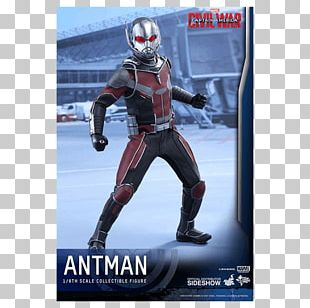 Captain America Ant-Man Hot Toys Limited Marvel Cinematic Universe PNG