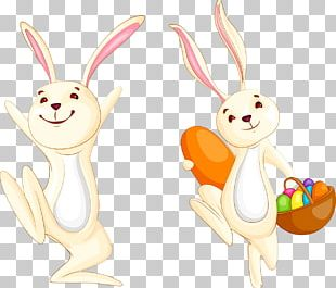 Easter Bunny Hare PNG