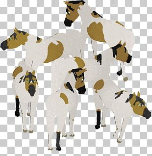 Dairy Cattle Horse Pack Animal PNG