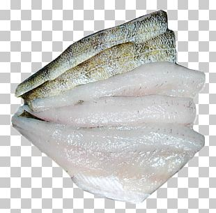 Northern Pike Yellow Perch Rainbow Trout Oily Fish Walleye PNG