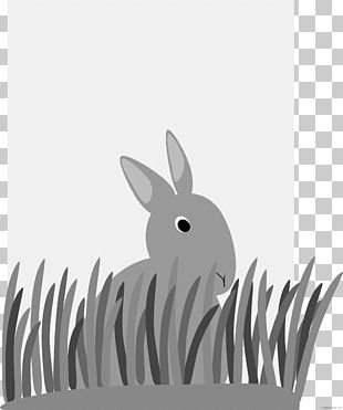 Domestic Rabbit Free Content Hare PNG