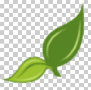 Hillbilly Tomato Herb Seed Leaf Garden PNG