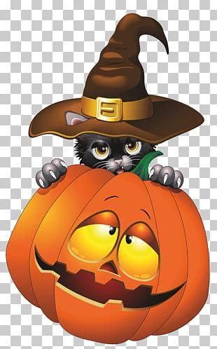 Cat Halloween Jack-o-lantern PNG