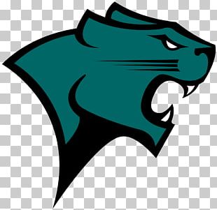 Chicago State University University Of Illinois At Chicago Chicago State Cougars Men's Basketball Chicago State Cougars Women's Basketball DePaul University PNG