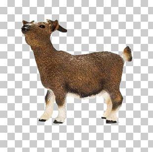 Nigerian Dwarf Goat Schleich Dwarf Goat Toy Figure Cattle Schleich Domestic Goat PNG