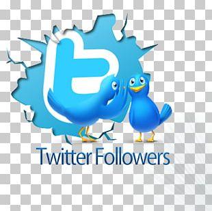 Social Media Marketing Like Button Pochi Nene Avatar PNG