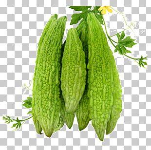 Biryani Leaf Vegetable Breakfast Cereal Indian Cuisine PNG