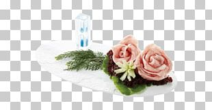 Cut Flowers Rose Family Pink M PNG
