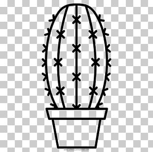 Paper Coloring Book Drawing Succulent Plant PNG