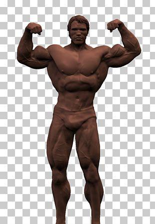 Arnold Schwarzenegger Transparent Background PNG