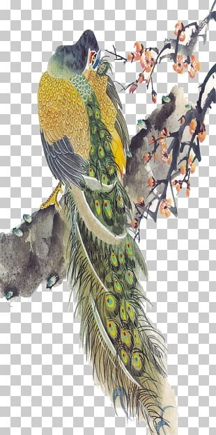 Bird Peafowl Chinese Painting PNG