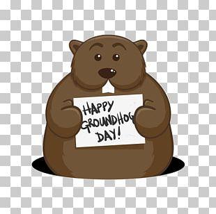 Bear Groundhog Day Punxsutawney Phil PNG